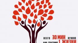 XII Форум Службы крови г. Калининград 06.12.2019г.